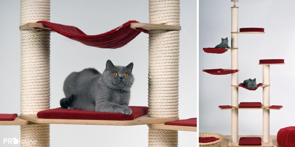 Katzen Kletterspaß Deckenhoch