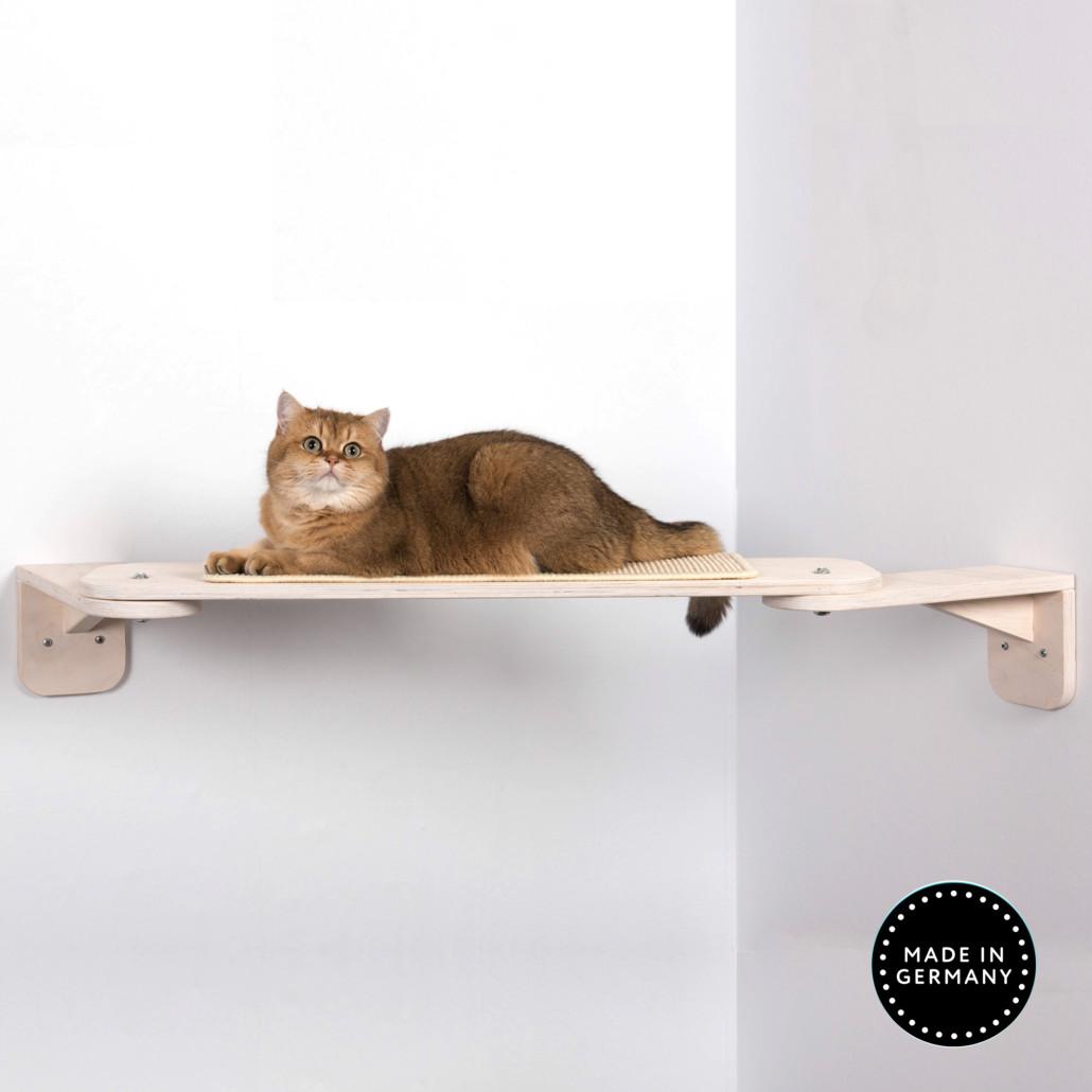 Katzen Catwalk Nele