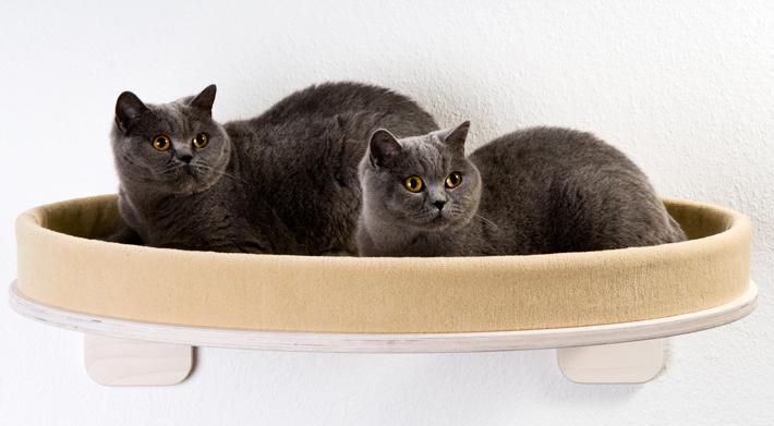 katzenliege h ngematte liegemulde zur wandmontage. Black Bedroom Furniture Sets. Home Design Ideas