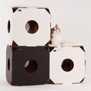 katzenspielzeug_miau_modul