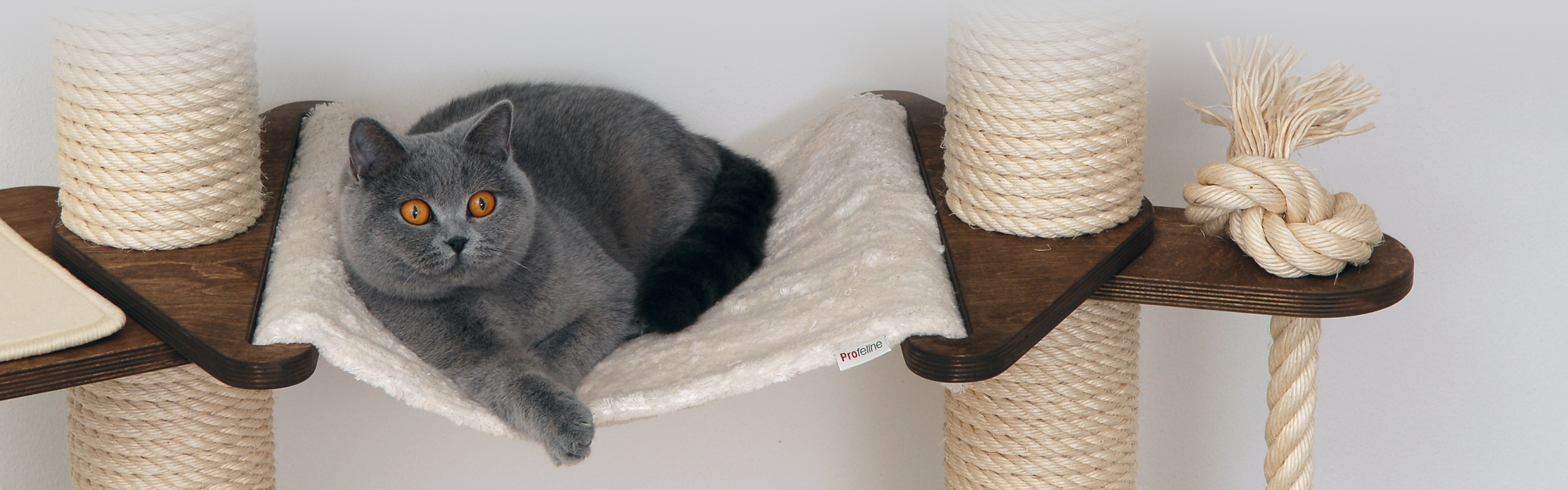 profeline cat trees scratching posts and cat supplies. Black Bedroom Furniture Sets. Home Design Ideas