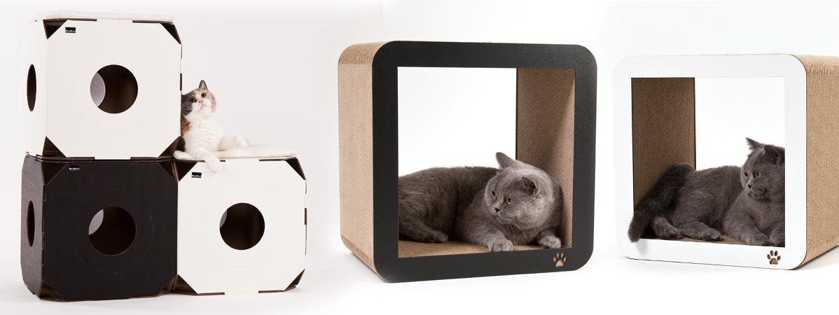 katzenspielzeug f r das selbstst ndige spielen profeline. Black Bedroom Furniture Sets. Home Design Ideas
