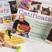 jackson_galaxy_cat_toy_europe