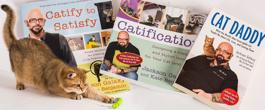 Jackson galaxy and kate benjamin cat toys and cat books for Jackson galaxy store