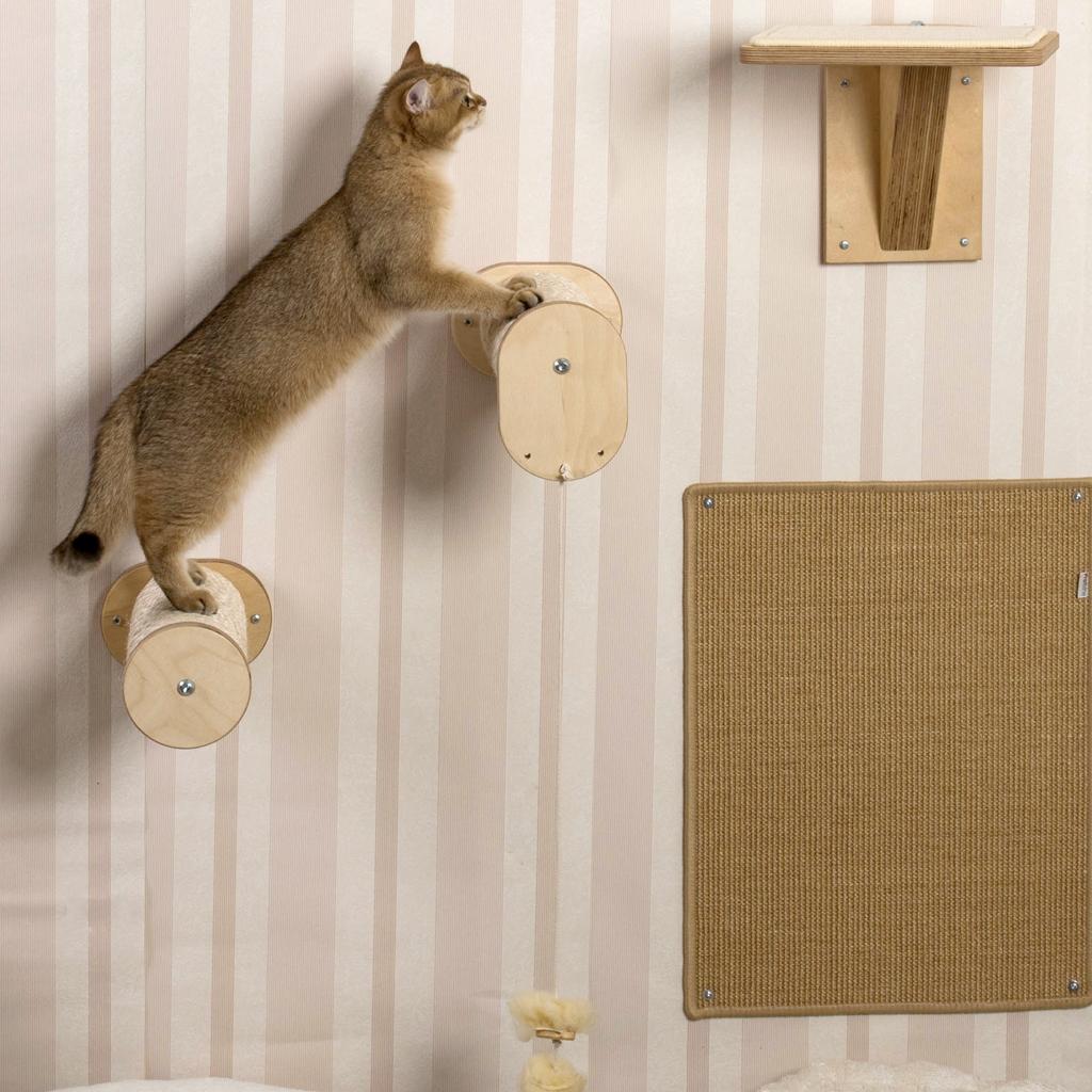 katzen kletterwand abenteuerspielplatz f r aktive katzen. Black Bedroom Furniture Sets. Home Design Ideas