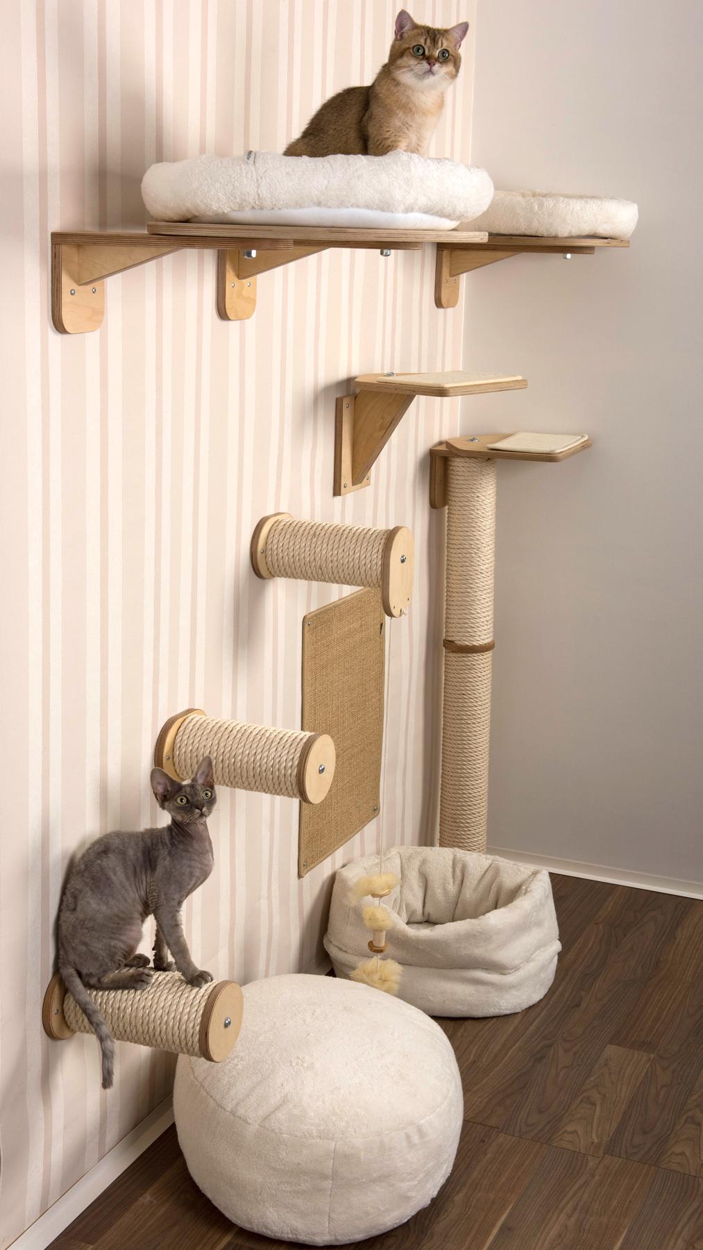Kletterwand für Katzen   Katzenmöbel für die Wandgestaltung