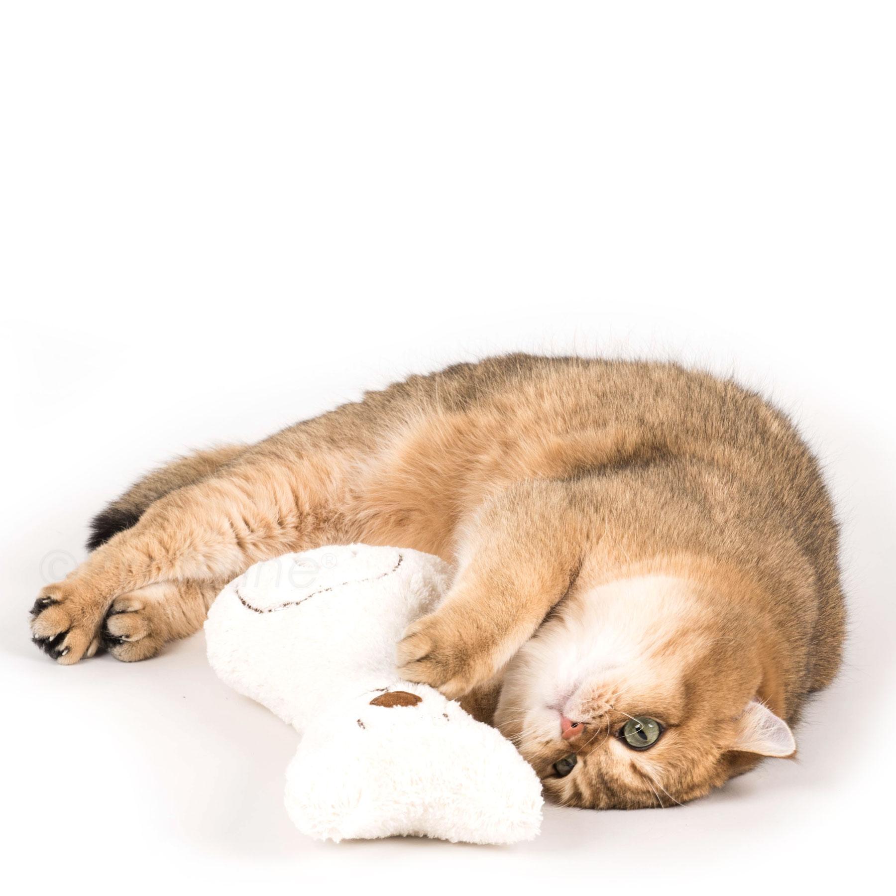 artgerechtes katzenspielzeug mit katzenminze und baldrian. Black Bedroom Furniture Sets. Home Design Ideas