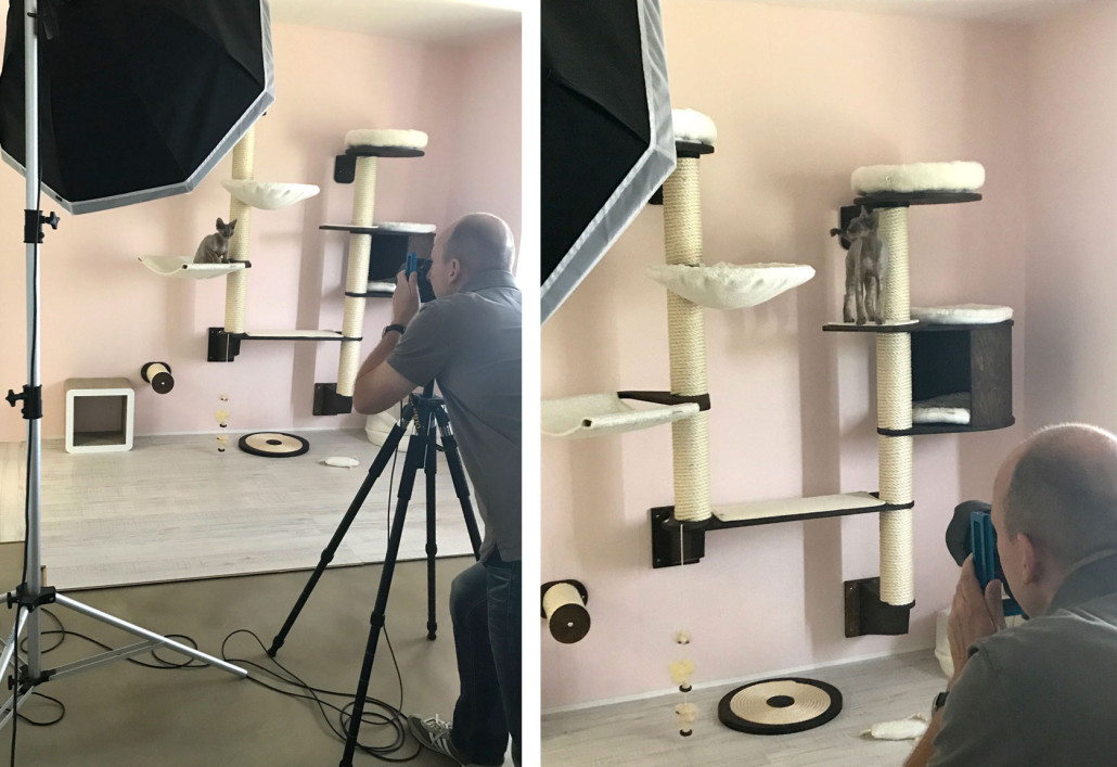 profeline-fotostudio-katzen-kratzbaum