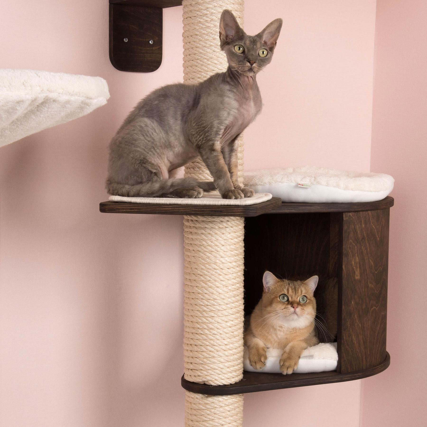 das beste von spielzeug f r katzen selber basteln. Black Bedroom Furniture Sets. Home Design Ideas