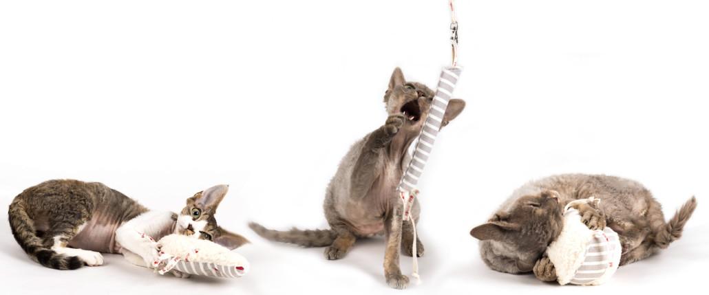 oekolokisches-katzenspielzeug-profeline