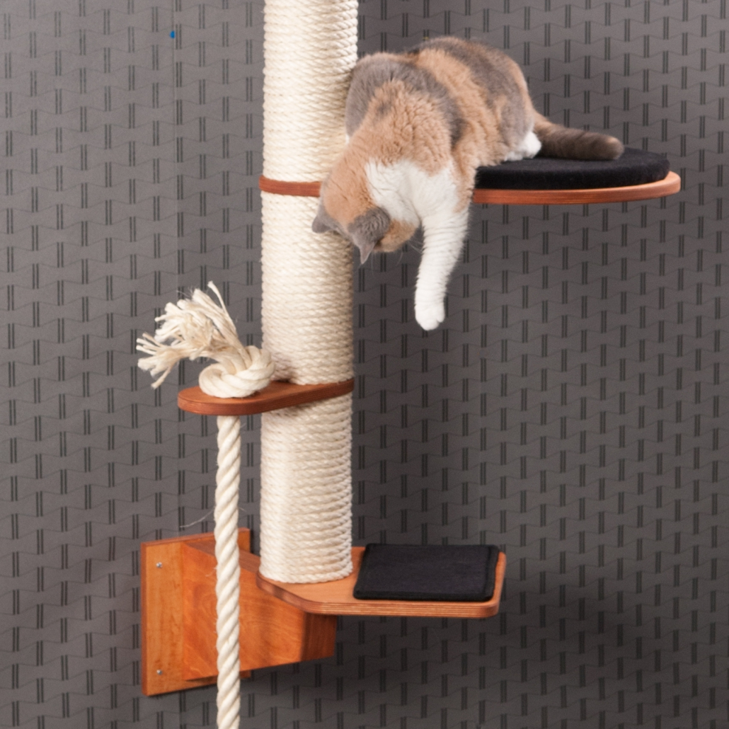 Wall Mounted Cat Trees A New A New Generation Of Modern Cat Trees