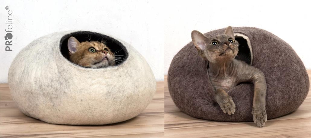 Katzen Kita